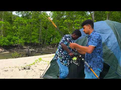 Island Fishing | Vacation Travel Guide | Expedia