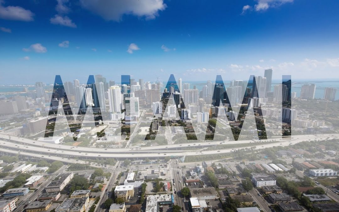 One Day in Miami | Expedia