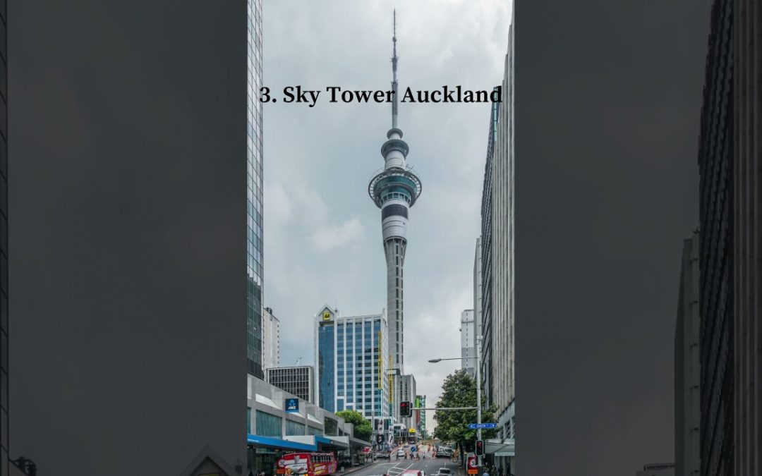 TOP 3 THINGS TO DO IN AUCKLAND NEW ZEALAND🇳🇿 #Shorts