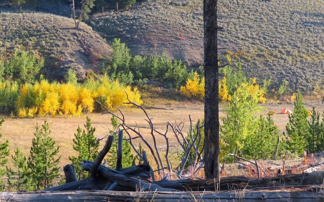 Early Morning Hike on the Lamar River Trail – Yellowstone National Park