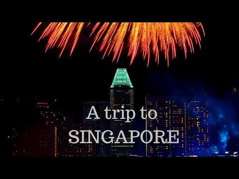 AFFORDABLE TRIP TO SINGAPORE FROM INDIA #india #singapore #travel #tips #budgettravel