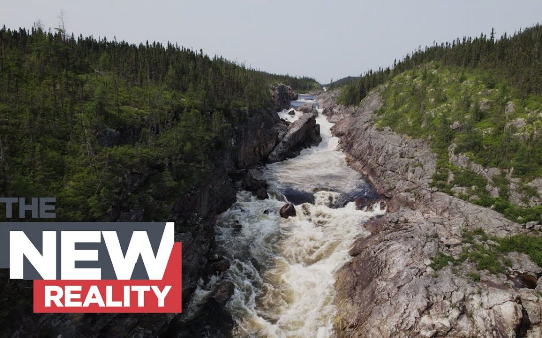 How a river in Quebec won the right to be a legal person